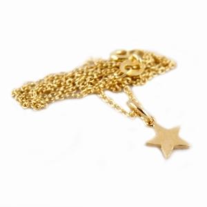Forgyldt halskæde med stjerne – pris 199.00